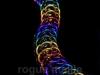 065-Rainbow Dragonback Bracelet